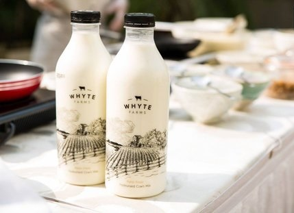 WHYTE FARMS CASE STUDY, FUNDING, BUSINESS MODEL, REVENUE MODEL, INVESTORS, COMPETITOR